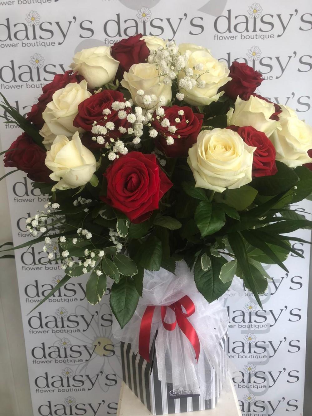 30 Red & White Roses