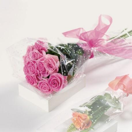 12 Luxury Pink Roses