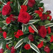 Rose & Carnation Coffin Spray