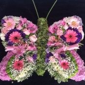 Funeral Butterfly