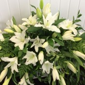 Casket Spray - All White Lillie's
