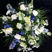 Posy Pad - White & Blue