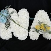 NAN - Carnations