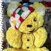 Pudsey Bear - 3D